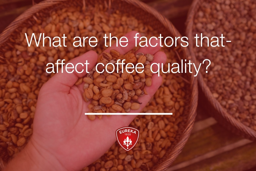 What-are-the-factors-that-affect-coffee-quality